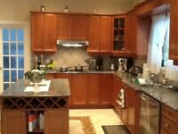 Kitchen cabinets and granite counter included