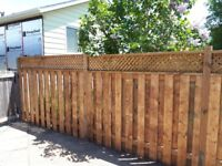 Fence Repair or Build New