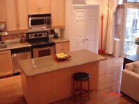 Kitchen Island Cabinet with Solid Granite Countertop