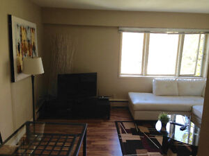 FREE MAY RENT! Fully furnished 1-bed apt AVAILABLE IMMEDIATELY