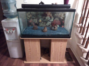 Fish tank with stand complete set