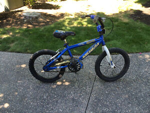 A boy's bike (in great condition)