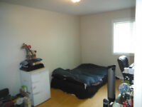 Large, Clean + Bright Student Bedroom! Pet Friendly!