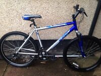 Mens Apollo mountain bike