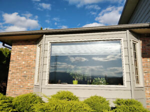 Fir lined wood windows for sale - various sizes and prices obo
