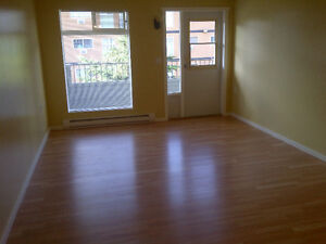 Two-Bedroom Apartment - Downtown Area - Available March 1