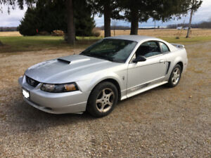 2003 FORD MUSTANG - PONY PACKAGE