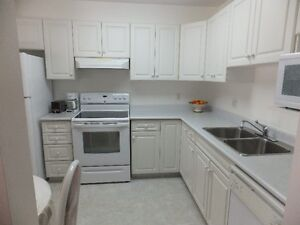 FOR SALE: 1121 sq. ft. bright 2 bedroom, furnished, in Nutana