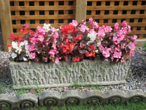 Cement Outdoor Planter - Perfect for Porch or Patio - Very Heavy