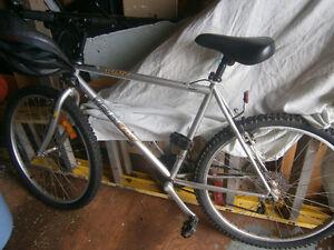 Good, strong, adult bike