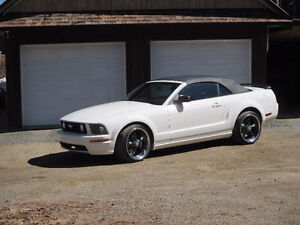 2007 Ford Mustang Cabriolet (IMPECCABLE !!!)