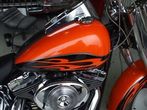 MOTORCYCLES & HELMETS PAINTED Kawartha Lakes Peterborough Area image 6