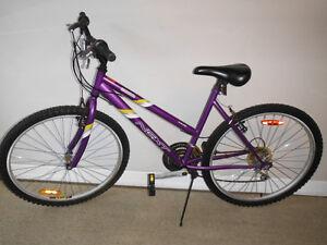 Bicycle Next Generation Girls Bike 18 speed
