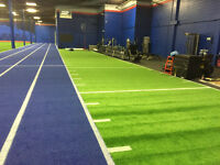 Looking for GAME LINE PAINTER - Paint Game Lines on Turf
