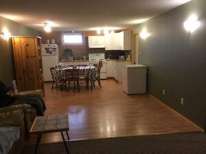 2 Bedroom Funky Basement Suite