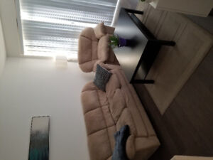 Couch set, coffee table, and rug