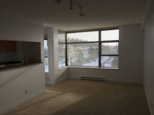 2 Bedrooms,2 bathrooms spacious apartment for rent