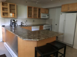 Fabulous spacious 1 bedroom basement suite in West Vancouver