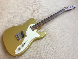 USACG thinline telecaster fat Brazilian board neck