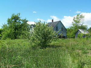 Water Frontage Property.Old farm 211 acre parcel of land. St. John's Newfoundland image 3