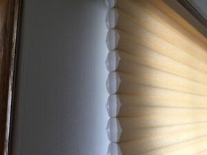 FREE Hunter Douglas pleated blinds