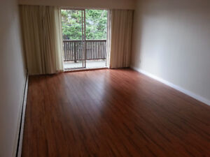 Beautiful 2BR apartment in Burnaby Highgate