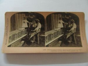 ANTIQUE STEREOVIEW CHICKEN MODEL FARM GUELPH ON 1902
