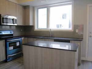3 Bedroom NEW BUILD located in beautiful Downsview!