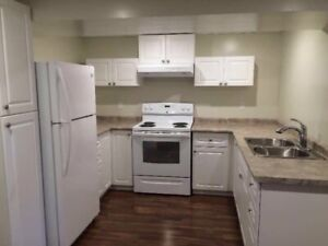 One Bedroom - Nice and New- Everything Included