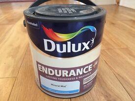 Dulux Endurance Paint