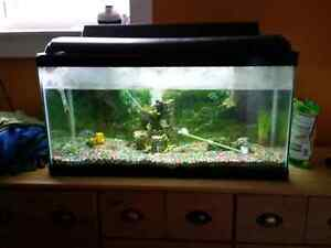 Tank and a ll accessories REDUCED ! Prince George British Columbia image 1