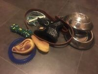 Puppy items / chihuahua harness bowls lead small dog