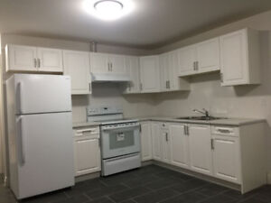 2 BR brand new suite for rent in-stone counter/ flat top range (