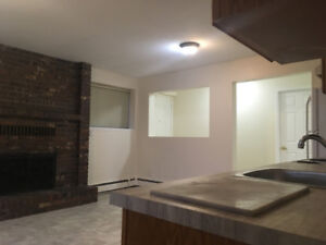 BRIGHT, NEWLY RENOVATED BASEMENT SUITE FOR RENT