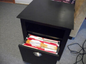 Night Stand / Filing Cabinet