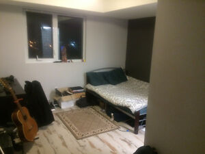 Comfortable Penthouse Bedroom Sublet - Jan 1st