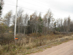 PRIME 4 ACRES ZONED COMM/LIGHT INDUSTRIAL HOLYROOD ACCESS ROAD St. John's Newfoundland image 2