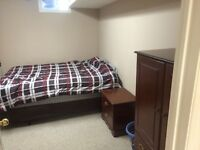 Beautiful furnished basement appartment in perfect location!!!