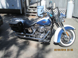 MINTY 2005 HARLEY DAVIDSON SOFTAIL DELUXE.