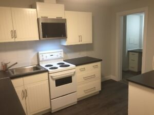 Renovated, Furnished 2 Bedroom Bsmt. Suite - CLOSE TO UBC