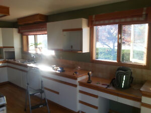 IN SALMON ARM - 1990s Euro style Kitchen cabs & cieling lights
