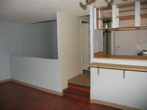Bachelor suite with half bedroom downtown