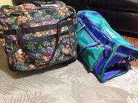 2 Large Luggage Bags - Asking $30 OBO