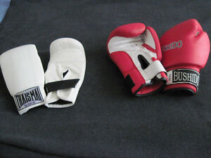 Bag Gloves (Thaismai) and Boxing Gloves (Bushido)