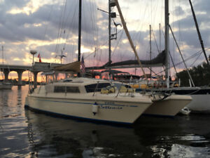 New price catamaran in Florida