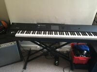 Korg M50 88 weighted keyboard / workstation, stand, amp, paddled gig bag and pedal