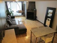 Plateau Mont-Royal 3-1/2 à louer, meublé, chauffé, tout inclus