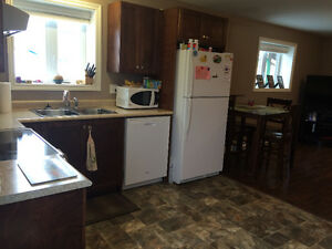 2 bedroom walkin ground level basement Apartment