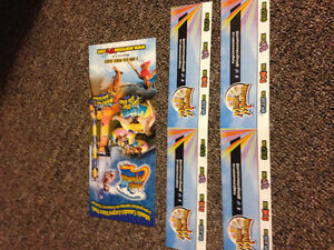 2 sets of magic mountain passes