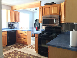 "132 Jacobson Ave. 3 Rooms ""Location Plus"" Brock/Niagara Students"